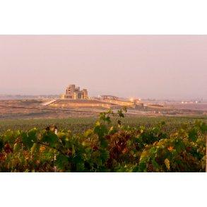 Rødvin - Bulgarien